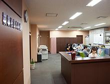 桜樹法律事務所内